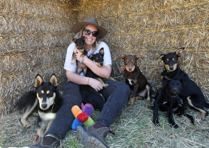 Herd2homes working dog rescue